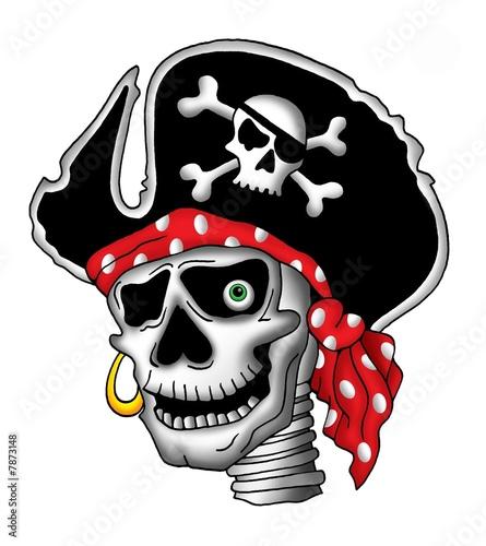Foto-Plissee - Pirate skull in hat (von Klara Viskova)