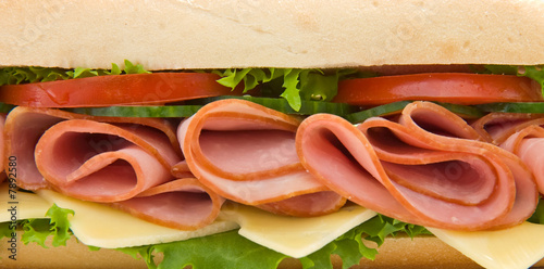 Staande foto Snack Close up of a ham and cheese sandwich