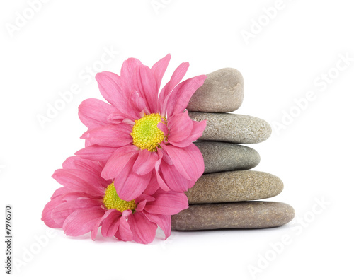 Fototapeta zen / spa stones with flowers obraz na płótnie