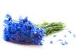 canvas print picture - Cornflowers bouquet