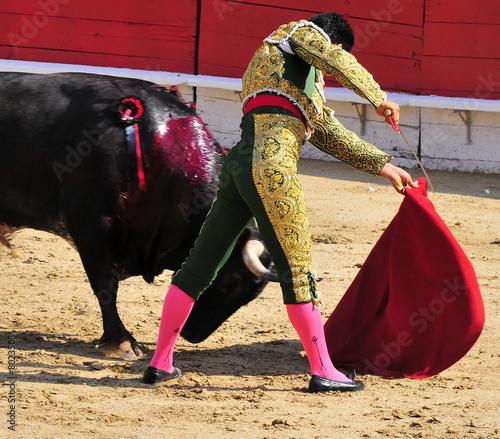 Poster Bullfighting Matador & Close Pass