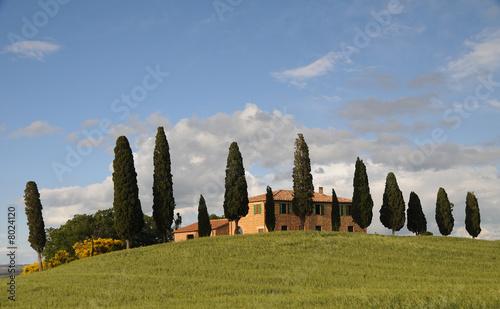 Keuken foto achterwand Toscane Haus mit Zypressen Bauernhof Toscana Toskana