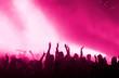 konzertpublikum pink