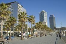 Barcelona Port Olímpic