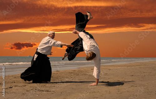 Canvas Print aikido au couché de soleil