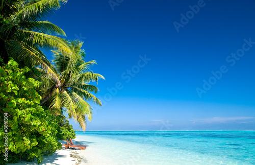 Foto-Schiebegardine Komplettsystem - Einsamer tropischer Strand (von Loocid GmbH)