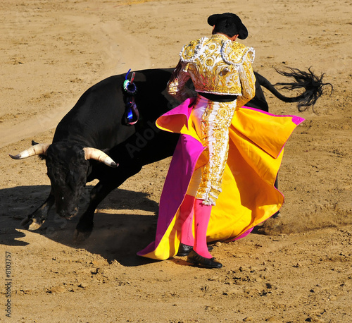 Poster Bullfighting Matador & Bull