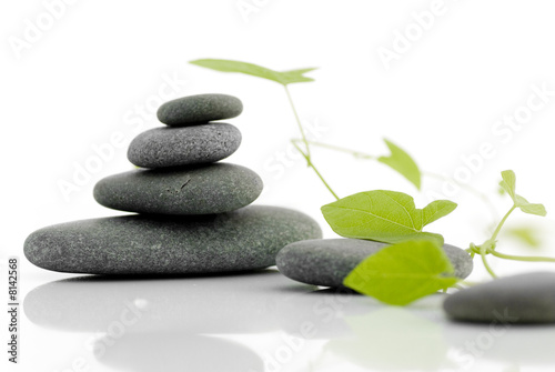 Papiers peints Zen Zen serie - pebble on a white background with green plant