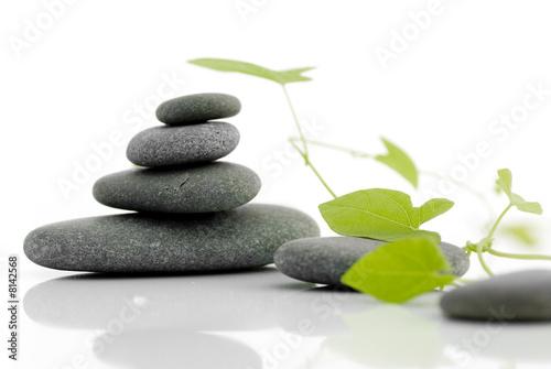 Akustikstoff - Zen serie - pebble on a white background with green plant