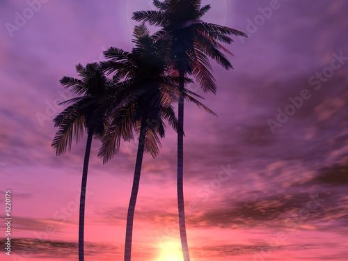 Printed kitchen splashbacks Beige Beautiful sunset