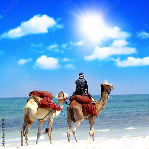 Poster Tunesië Marokko Reise