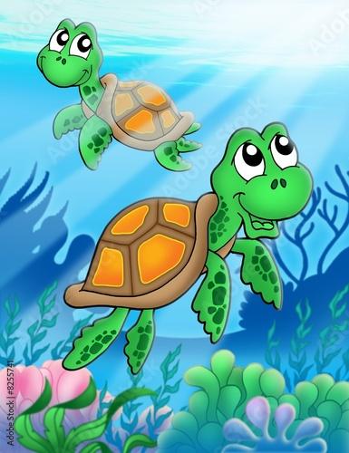 Foto-Plissee - Little sea turtles (von Klara Viskova)