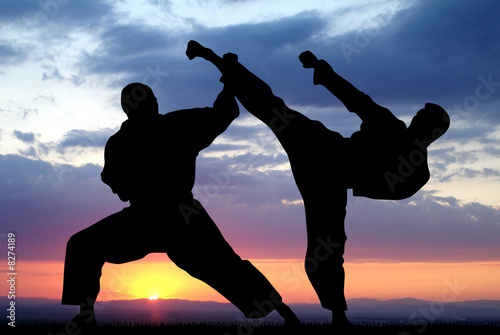 Canvas Print Martial art