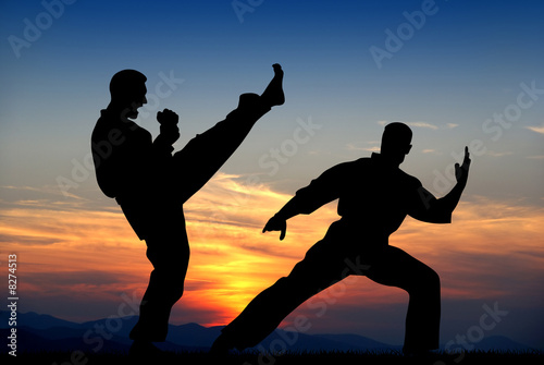 Martial art Canvas Print