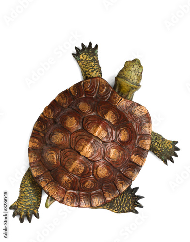 Foto op Canvas Schildpad Wooden turtle