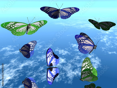 Fotografie, Obraz  les papillons