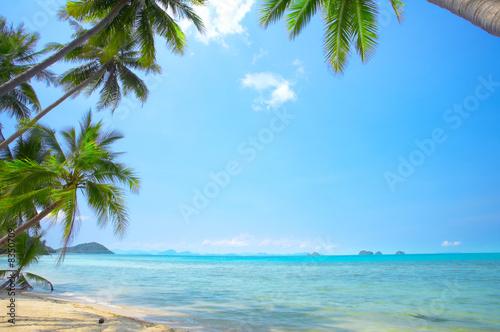 Foto op Canvas Strand beach