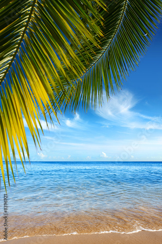 Foto-Leinwand - Tropical Beach