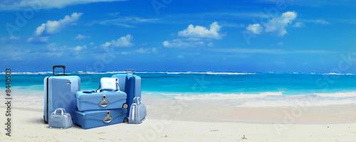 Obraz na plátně Tropical trip blue