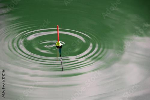 Fotografie, Obraz  bobber in green waves horizontal