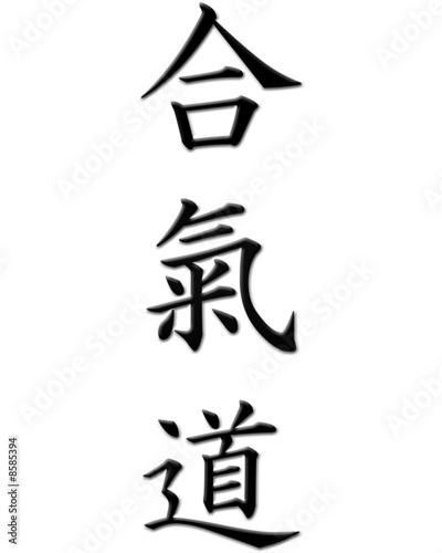 Canvas Print aikido