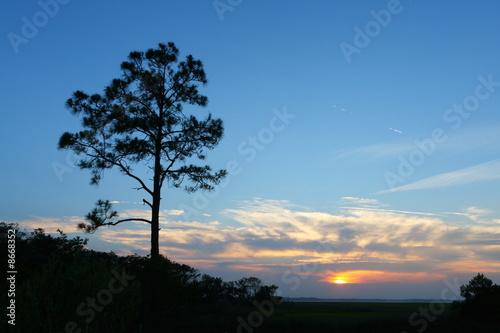 Sunset at Amelia Island Plantation Canvas Print