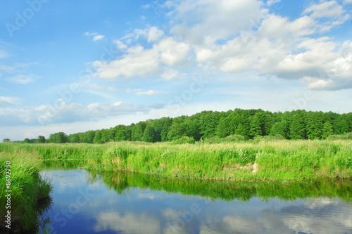 Fototapeta River. obraz na płótnie