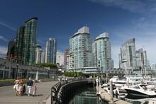 Urban Boardwalk