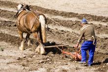 Agriculture Et Métier : Paysa...