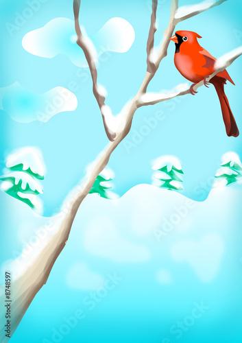 Poster Oiseaux, Abeilles xmas illustration 25