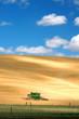 canvas print picture Combine Harvesting Wheat