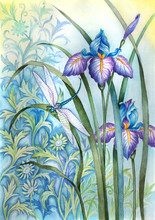 Dragonfly And Iris
