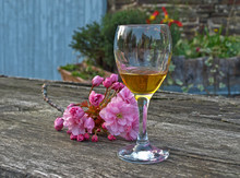 Degustation Of Homemade Calvados In French Village