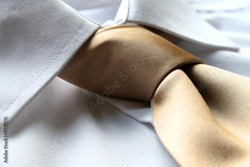 Fotografía Shirt and cravat