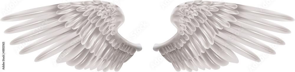 Obraz White Wings fototapeta, plakat