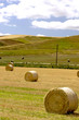 canvas print picture - Wheat fields freshly cut with round bales of hay