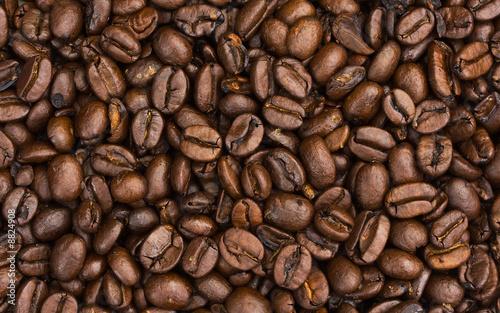 Fototapeta Coffee Beans obraz