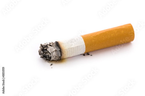 Fotografija  A Cigarette Butt with white background