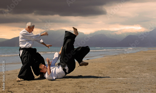 Photo aikido au japon