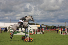 Horse Jumping At The Anglesey Show In North Wales