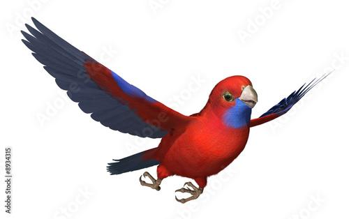 Photo  3D render of a Crimson Rosella parrot in flight.