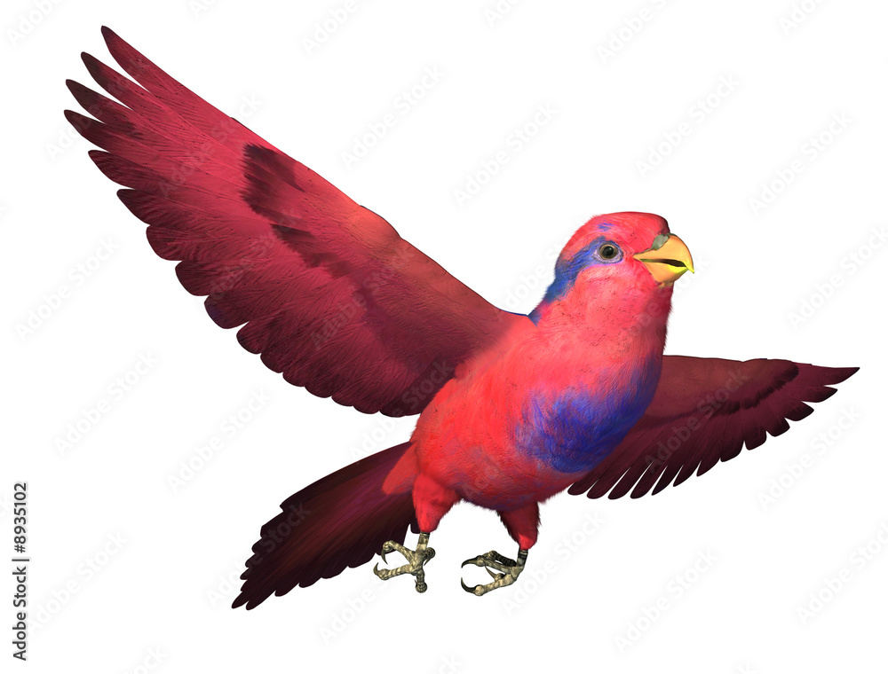 Photo  3D render depicting a Red and Blue Lory in flight