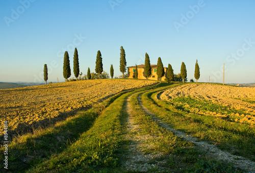 Deurstickers Toscane image of typical tuscan landscape