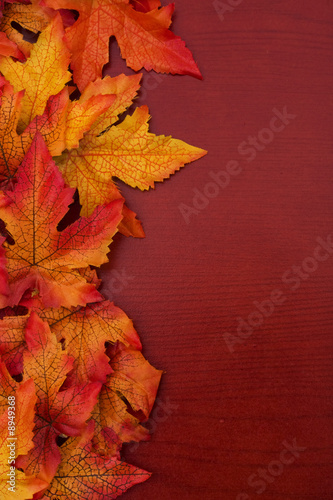 Fotografie, Obraz  Yellow and red fall leaves on wood background