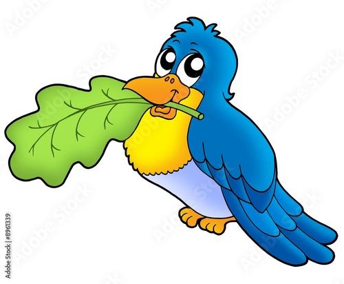 Poster Oiseaux, Abeilles Bird with leaf