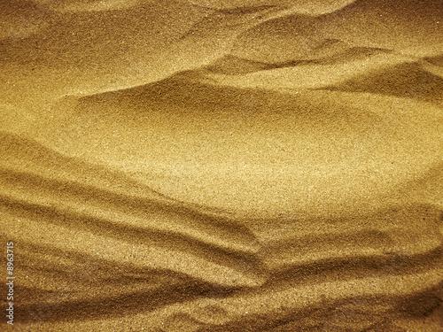 Cuadros en Lienzo sable doré