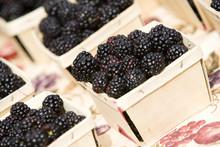 Pints Of Fresh Blackberries For Sale