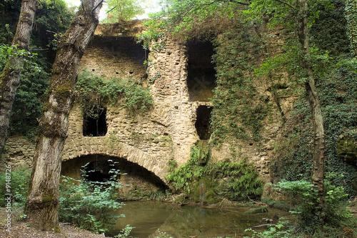 Fototapeten Forest river il Mulinaccio