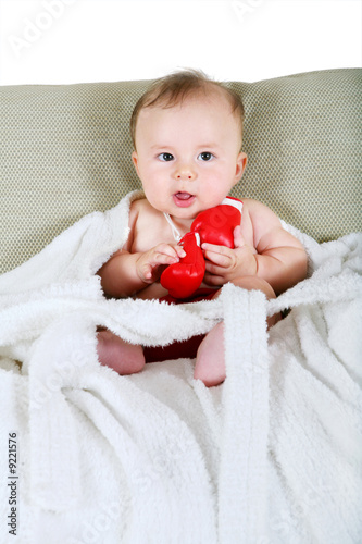 Portrait of the small boxer on a white background Fototapet