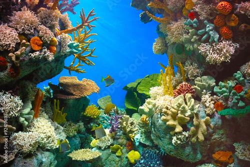 Foto-Schiebegardine Komplettsystem - Fondo marino